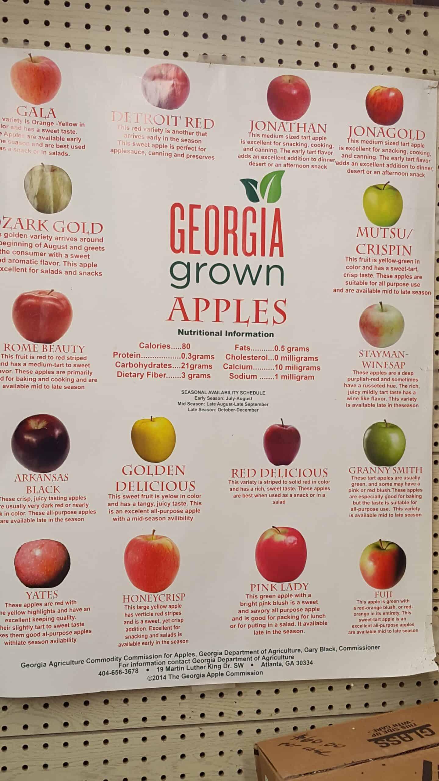 Georgia apple poster