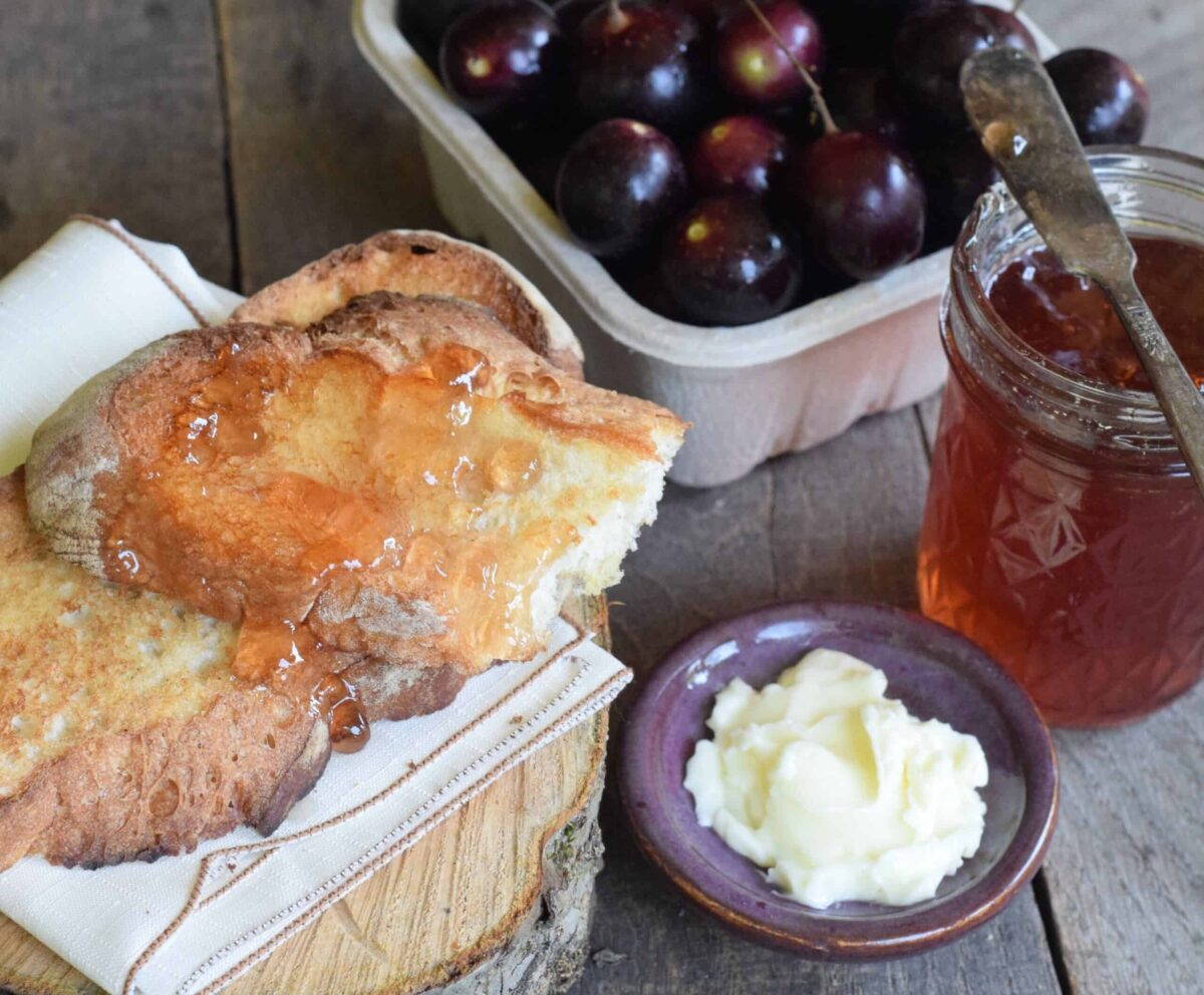 scuppernon jelly spread on toast with homemade butter and carton of musdadines