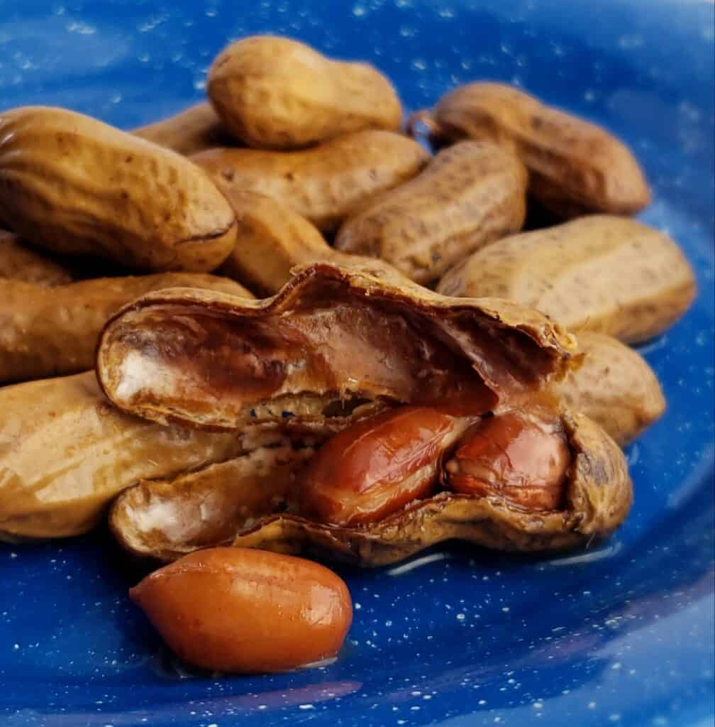 Instant Pot Boiled Peanuts: Plain or Cajun. No need to cook on the stovetop for hours when you can cook them in the Instant Pot