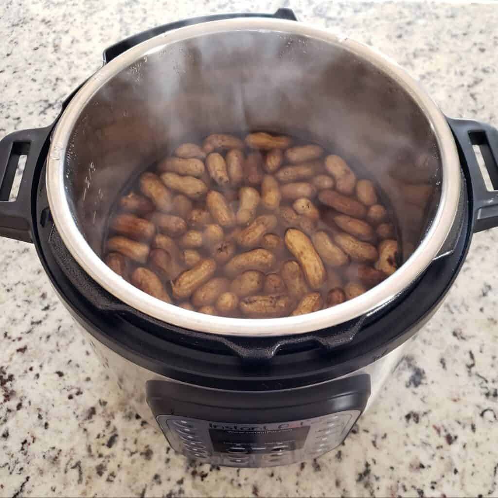 raw peanuts cooked in the Instant Pot.
