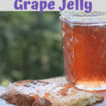 Pinterest Pin for Scuppernong Jelly